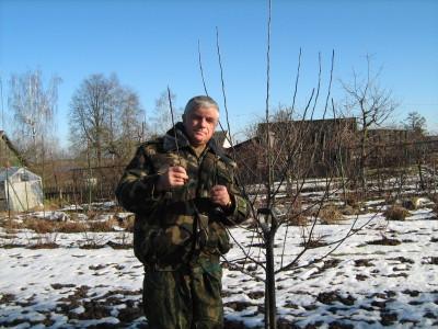Владимир Крылович садовод